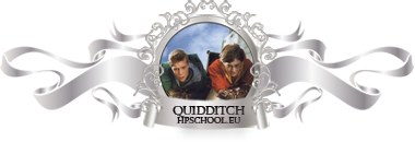 Hogwart HP School Quidditch